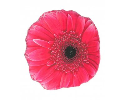CUSCINO OPTIC GERBERA ROSA 60X60