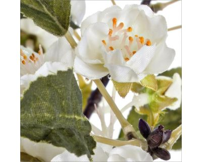 Ramo ciliegio igea bianco...