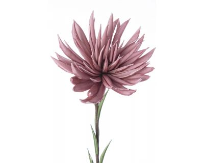 Crisantemo rosa h91