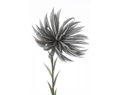 Crisantemo grigio h91